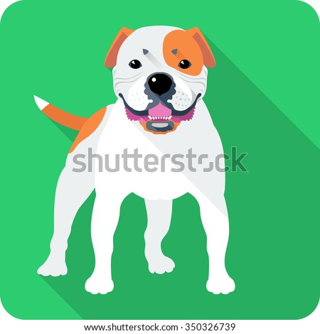 Vector smiling dog American Bulldog standing icon flat design