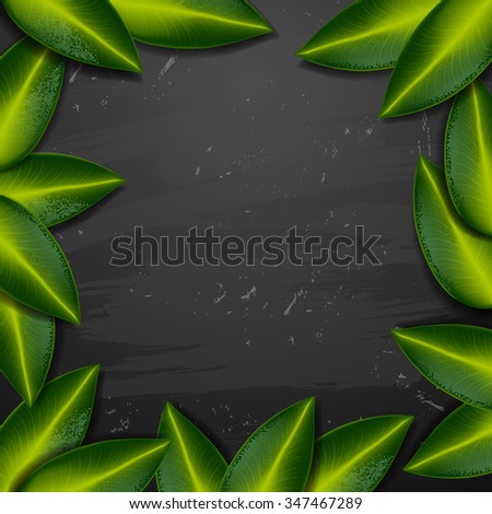 vector spa background. spa background. Summer tropical green leaves - stock vector