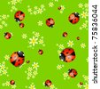 Vector spring background with small flowers and ladybugs - stock vector