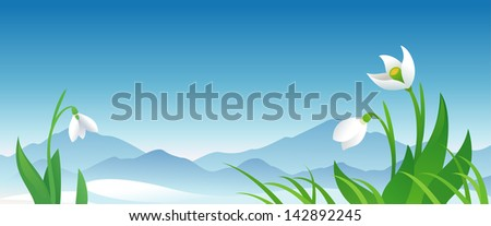 Vector spring banner with snowdrops - stock vector
