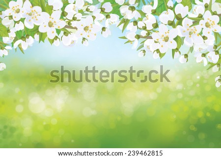 Vector spring blossoming tree on bokeh background. - stock vector
