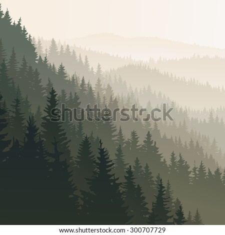 Vector square landscape of wild coniferous forest in morning fog in dark green tone. - stock vector