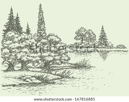 Vector summer landscape. Lush forest trees on the river bank - stock vector