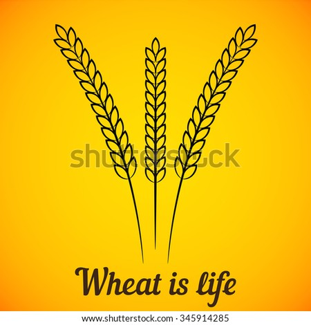 Vector Three Wheat Ears on Bright Yellow background. Element for the menu, restaurants, bakery and beer pub - stock vector