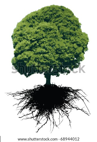 VECTOR Tree and its roots isolated on white - stock vector