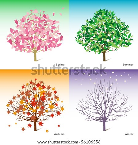 vector tree illustration, spring, summer, winter, autumn