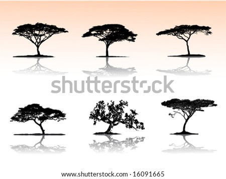Vector trees with reflection - stock vector