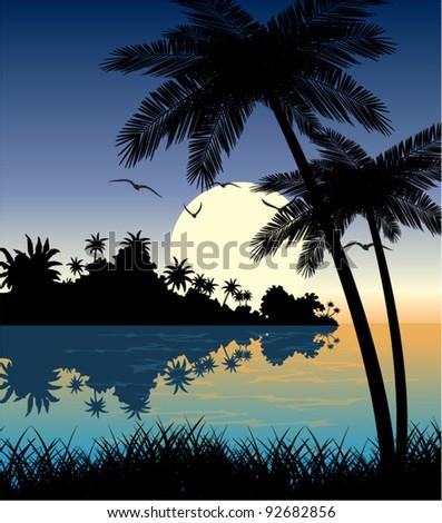 vector tropical beach in evening - stock vector