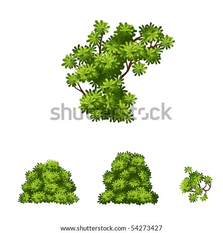 Vector tropical bush and set of leaves - stock vector