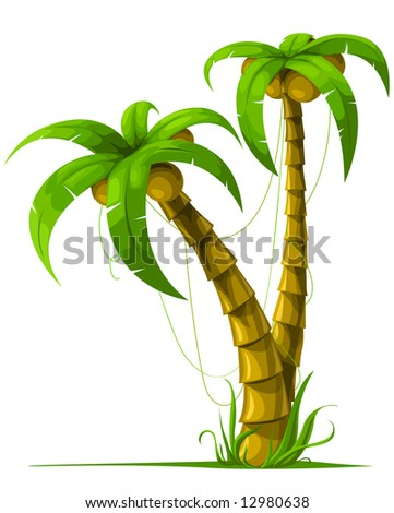 vector tropical palm trees isolated on white background illustration - stock vector
