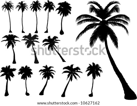 vector tropical palms and trees - stock vector