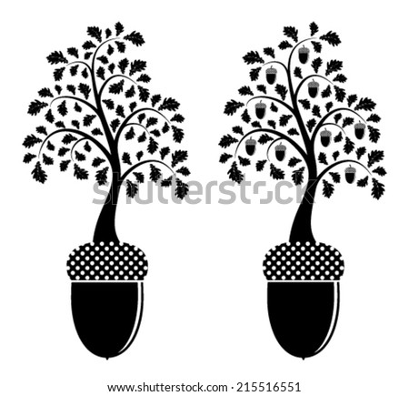 vector two versions of oak tree growing from acorn isolated on white background - stock vector