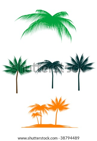 Vector version. Set of palm trees for design. Jpeg version also available - stock vector