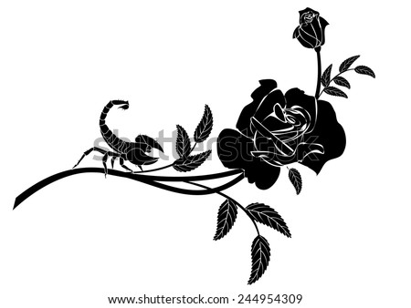 vector  vignette with rose and scorpion in black and white colors - stock vector