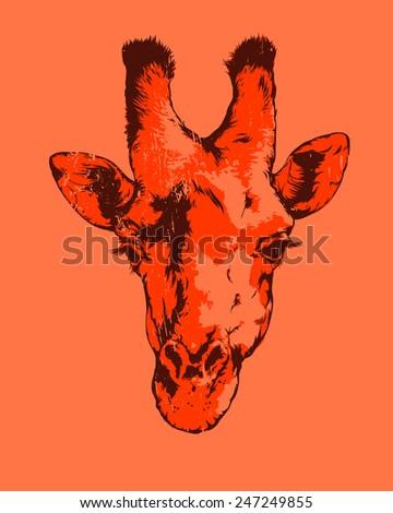 Vector vintage illustration - Giraffe  - stock vector