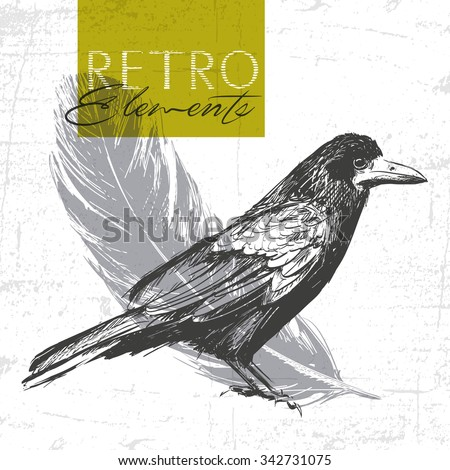 Vector vintage raven. Hand drawn illustration. See also other animals - stock vector