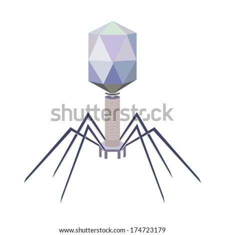 Vector virus bacteriophage model - stock vector