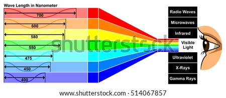 Vector Visible Light With Wave Length Difference Between Spectra Colors Which Give Different Properties Human Eye