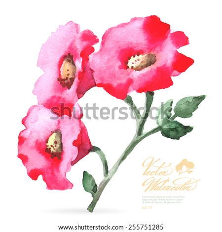 Vector watercolor flower on white backdrop. Isolated beautiful pink spring flower. - stock vector