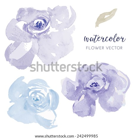 Vector Watercolor Flowers. Blue Watercolor Flowers - stock vector