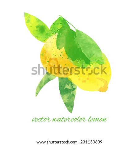 vector watercolor fruit lemon branch - stock vector