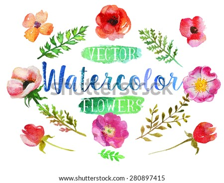 Vector watercolor hand drawn colorful flowers and leaves. The art paint on white background - stock vector