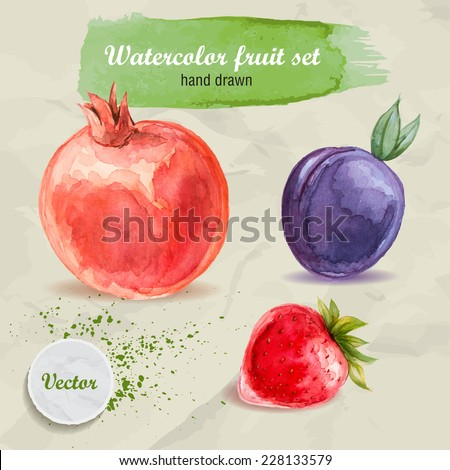 Vector watercolor hand drawn fruit set on paper with watercolor drops. Organic food illustration.Red pomegranate, plum and strawberry. - stock vector