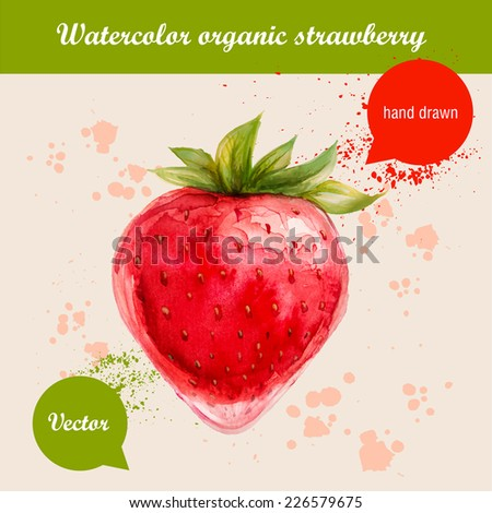 Vector watercolor hand drawn red strawberry with watercolor drops. Organic food illustration. - stock vector