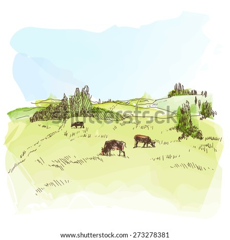 Vector watercolor image of the rural landscape - stock vector