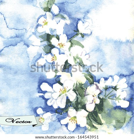 Vector watercolor spring flowers. Illustration for greeting cards, invitations, and other printing and web projects. - stock vector