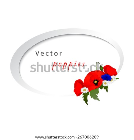 Vector white background with chamomile, cornflowers and red flowers poppies
