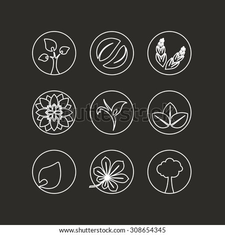 Vector white natural symbols - nature abstract element with leaf, tree, flower and spikelet, bio organic simple design in the circle  - stock vector