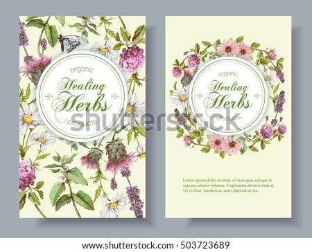 Vector Vertical Wild Flowers Herbs Banners Stock Vector 571923877
