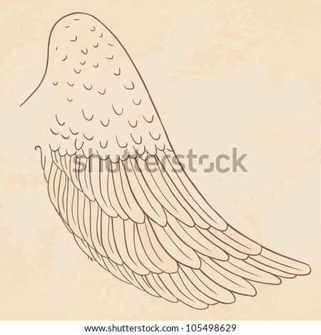 Vector wing illustration. Drawn by hand. - stock vector