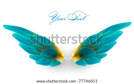 vector wings illustration - stock vector
