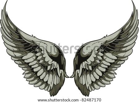 Vector wings illustration - stock vector