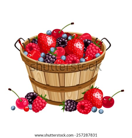 Vector wooden basket with various berries isolated on a white background. - stock vector