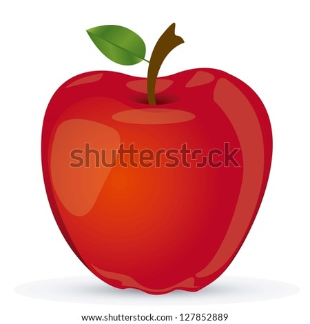 Vectored illustration of red apple, apple realistic vector illustration - stock vector