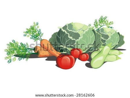 vegetable composition - stock vector