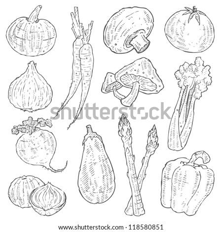 Vegetable Doodle Vector Set - stock vector