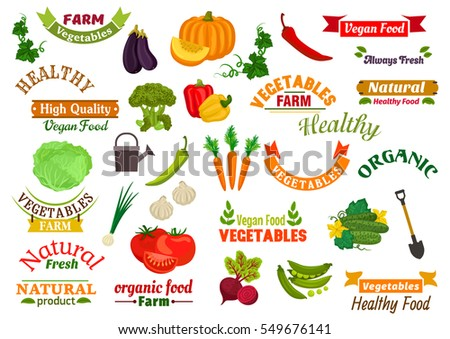 Vegetables and ribbons set. Fresh natural farm vegetables and greens pumpkin, carrot, pepper, dill, peas, radish, beet, cabbage, eggplant, cucumber. For grocery store, vegan product label sticker