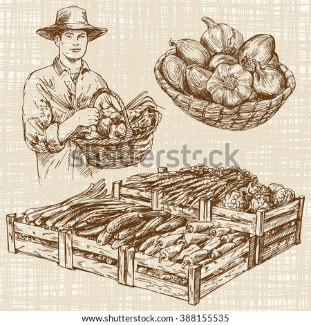 Vegetables at a farmers market, hand drawn set - stock vector