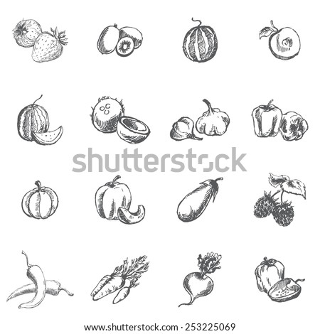 Vegetables, berries and fruits. Pen sketch converted to vectors. - stock vector