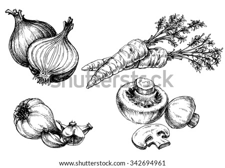 Drawing With Mushrooms Stock Images Royalty Free Images