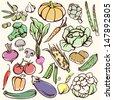 vegetables illustration - stock vector