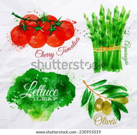 Vegetables set drawn watercolor blots and stains with a spray lettuce, cherry tomatoes, asparagus, olives - stock vector