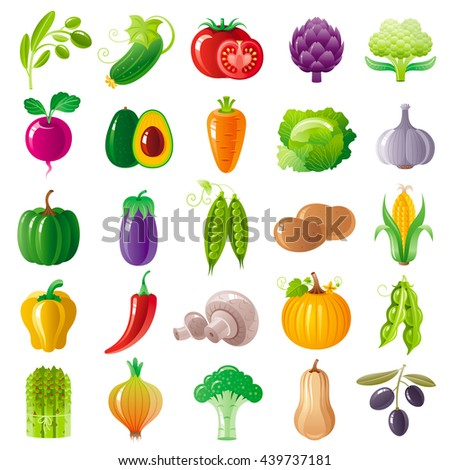 Vegetarian food icon set with organic fruits, vegetables, berries. Macro style icons collection. Tomato icon, pumpkin vegatable, eggplant, brocolli icon, olive branch, carrot vegetable, onion - stock vector