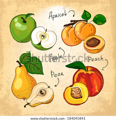 Vegetarian fruits collection  - stock vector