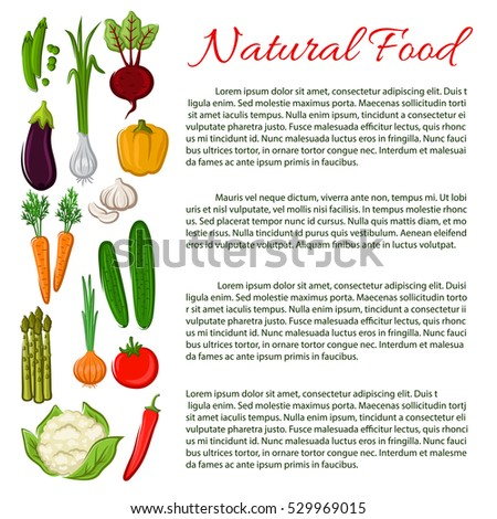 Veggies poster. Healthy vegetarian food nutrition information poster with vegetables radish, cabbage, garlic, corn, tomato, asparagus, corn, chili pepper, eggplant and pea.