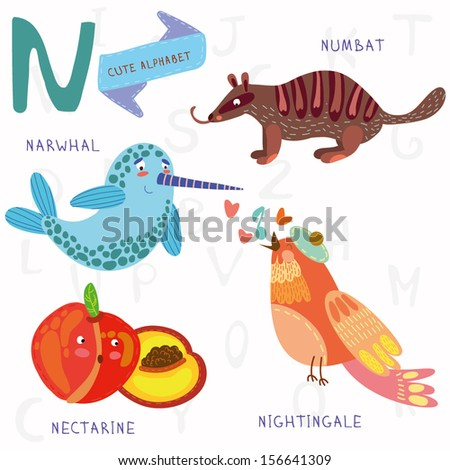 Very cute alphabet. A letter.Narwhal,numbat,Nightingale, nectarine. Alphabet design in a colorful style. - stock vector